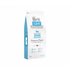 BRIT CARE Grain-free Junior 12kg Large Breed Salmon & Potato