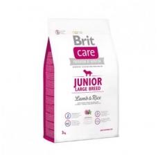 BRIT CARE JUNIOR LARGE BREED LAMB& RICE 3kg